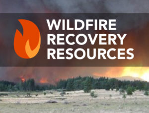 Wildfire recovery resources graphic
