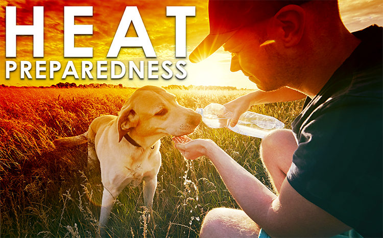 It's Getting Hot in Here: How to Stay Safe in Extreme Heat