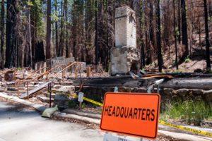 a burned-down big basin state park headquarters
