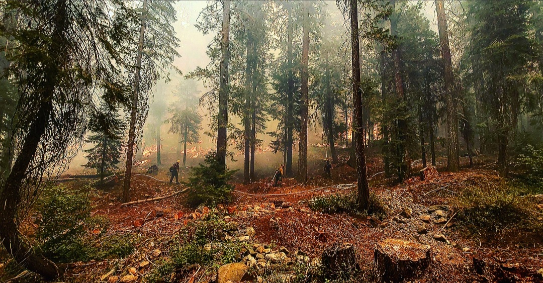 Prolonged Fire Weather Forces Temporary Closure of 10 California National Forests
