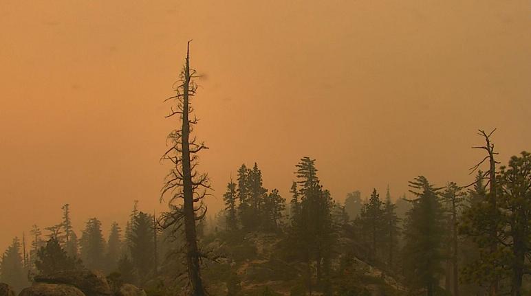 Caldor Fire Smoke Outlook for September 2, 2021